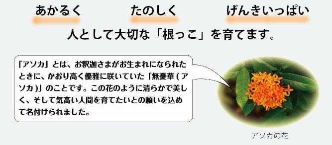 co-kyoiku5